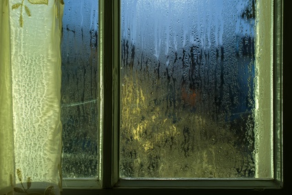 Mould, Mildew & Condensation: Tenant or Landlord Responsibility?