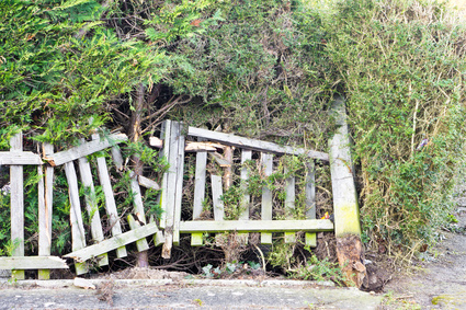 Fence Damage: Landlord or Tenant Responsibility?