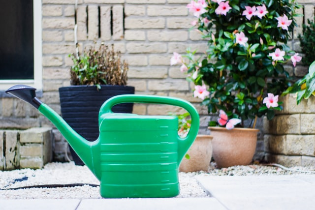 A Landlord's Guide to Garden Maintenance